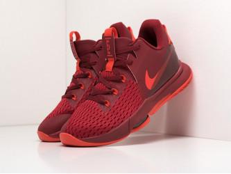 Кроссовки Nike Lebron Witness V